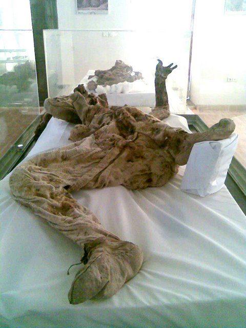 Múmia de sal