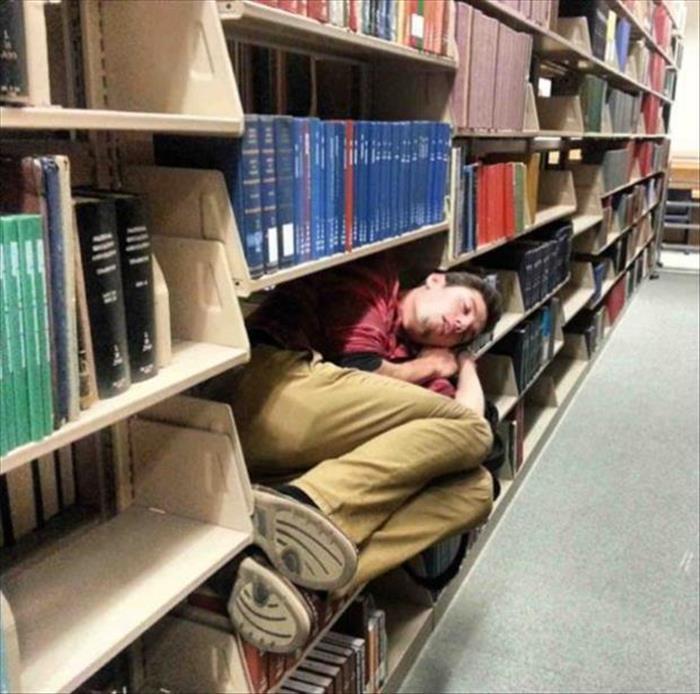 Soneca na biblioteca