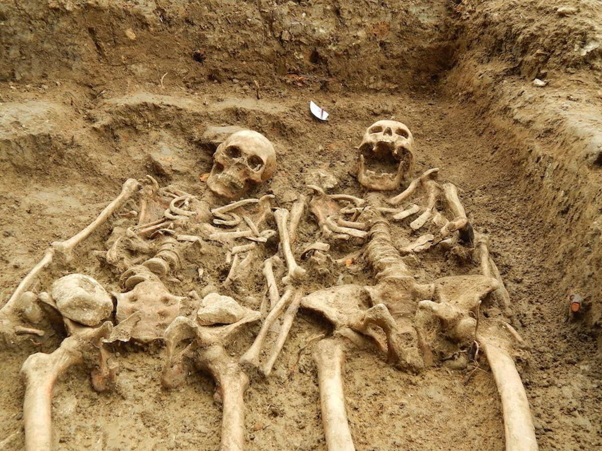 Esqueletos humanos