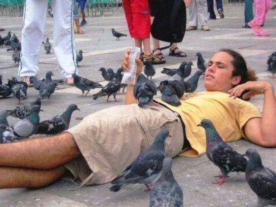 Rolando com pombas