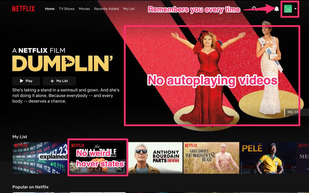Netflix Classic - Imagem 1 do software