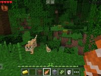 Imagem 8 do Minecraft - Pocket Edition