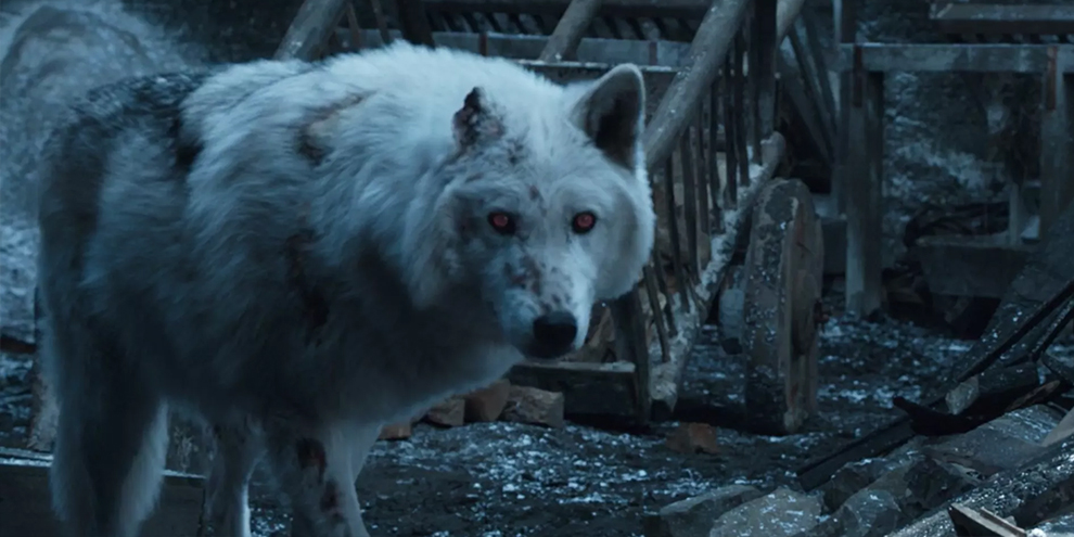 Diretor explica despedida de Jon e Fantasma em Game of Thrones