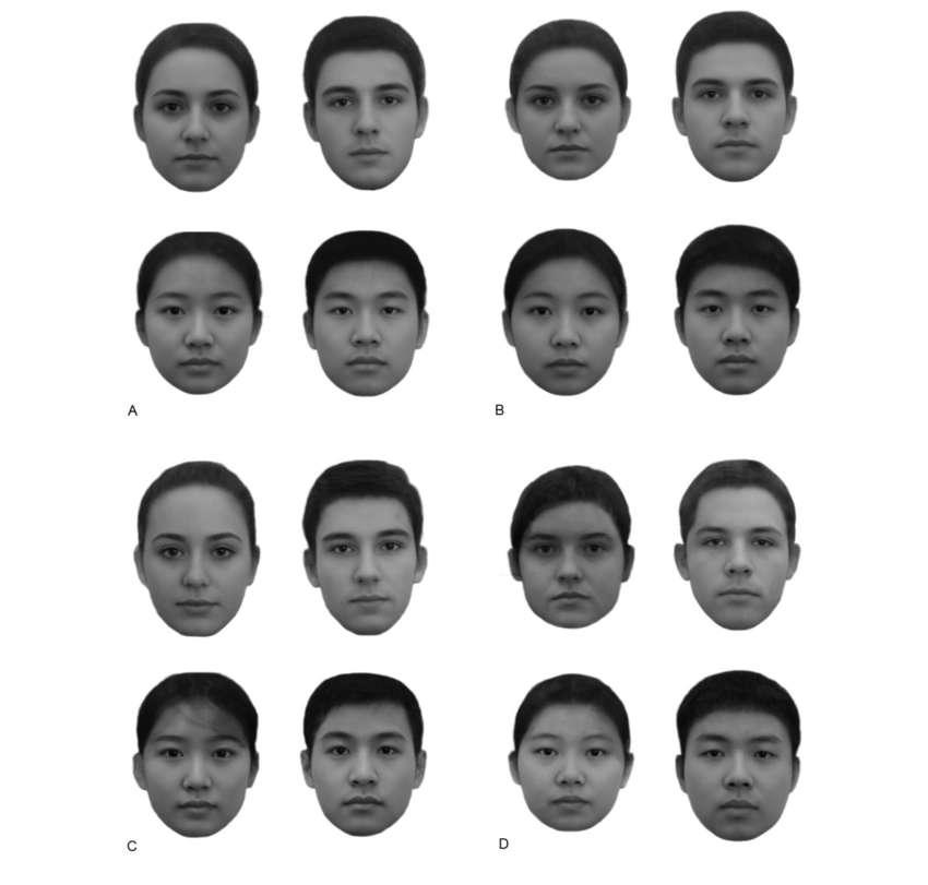 """Os rostos de A e C foram considerados os """"mais ricos"""" - Foto: University of Toronto"""