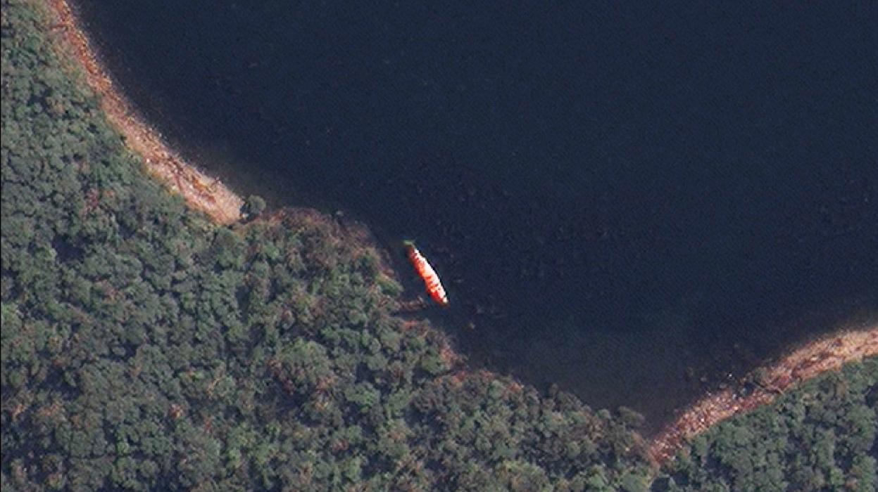 Imagem de satélite de uma baleia encalhada (Fonte: Gizmodo/Reprodução)
