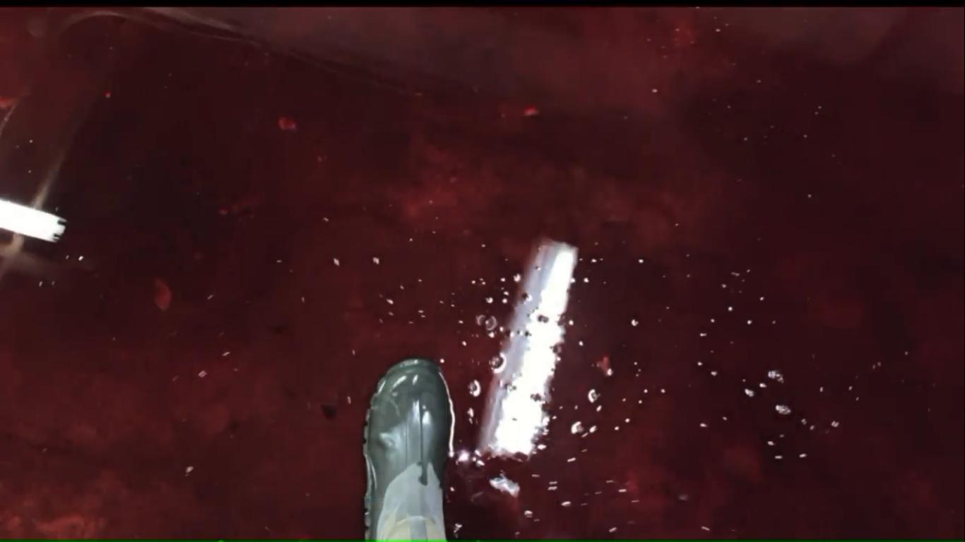 inundação de sangue