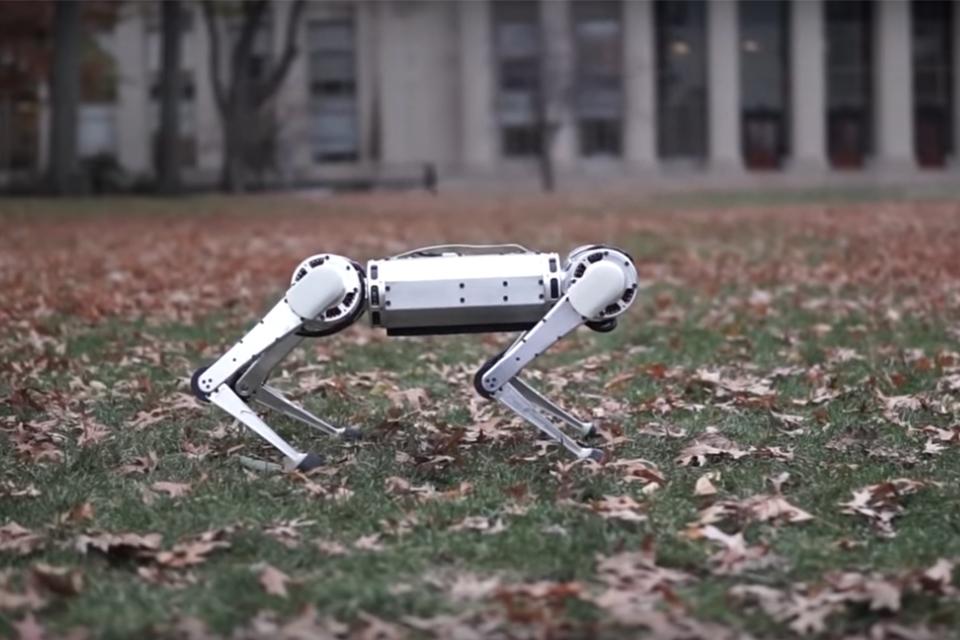 Grupo de 'robôs-leopardo' é visto 'fazendo mortal' e jogando bola
