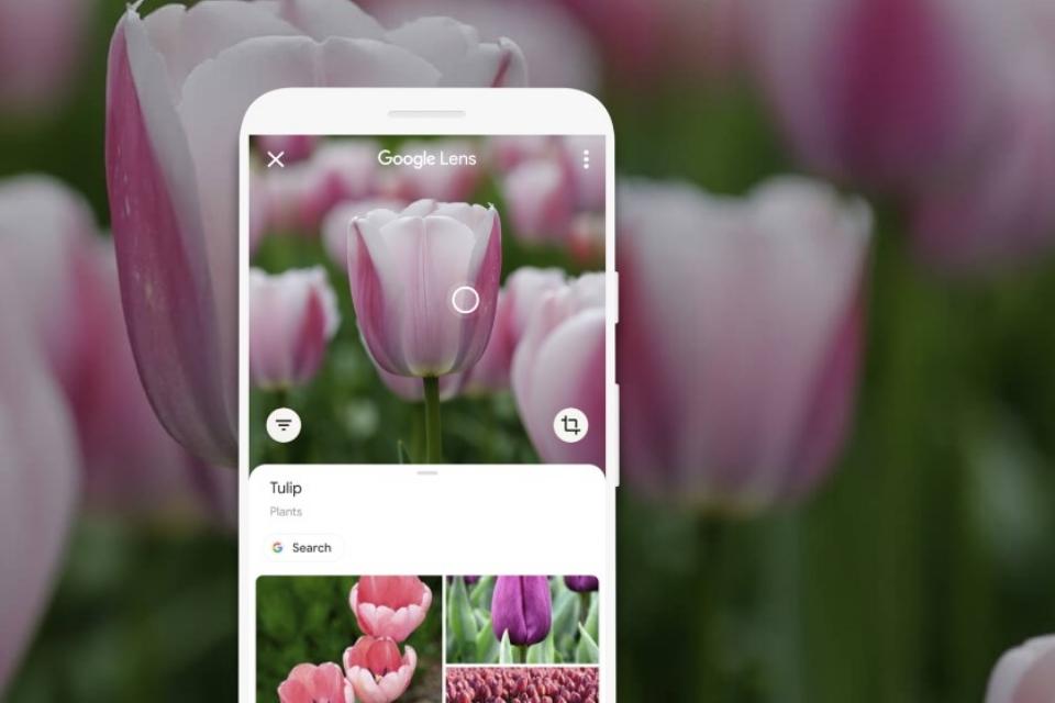 Chrome permite a pesquisa por imagens com Google Lens; veja como