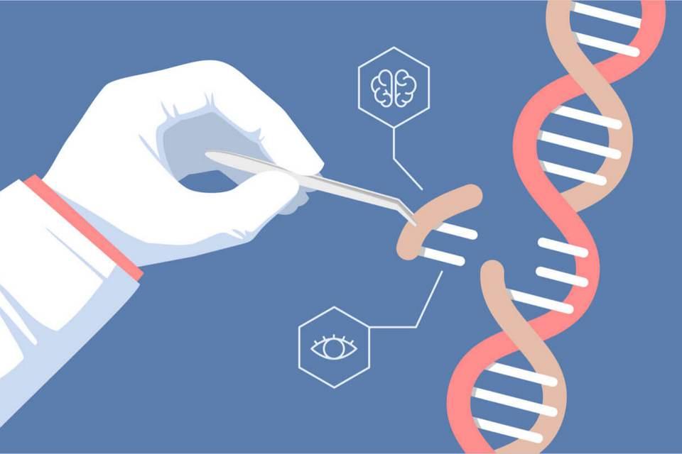 Técnica de edição de genes dá resultado em pacientes humanos