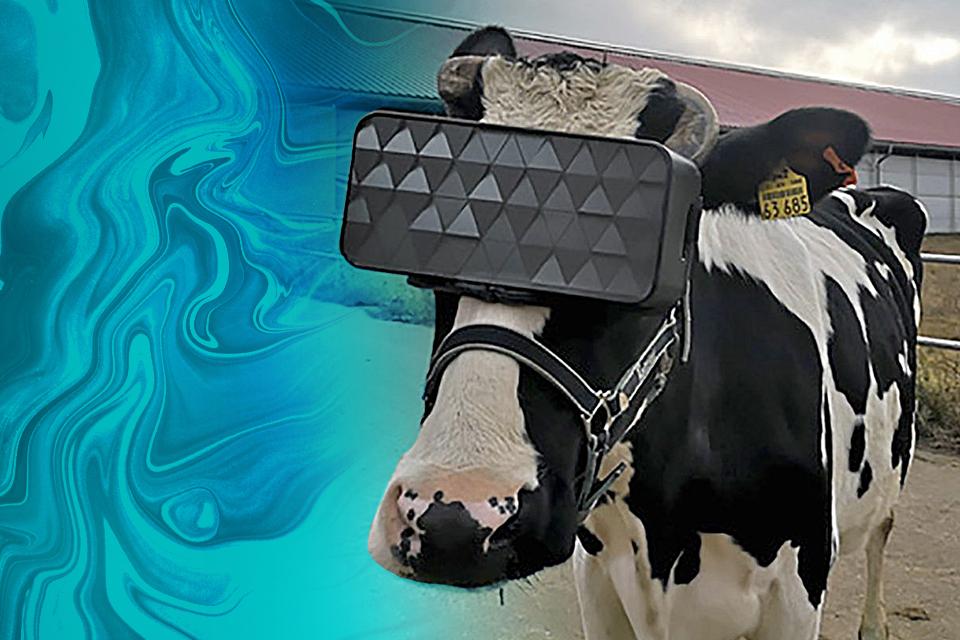 Moto One Hyper no BR, Vacas usando headset VR na Rússia – Hoje no TecMundo