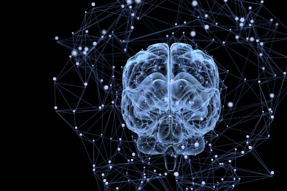 Rede de nanofios mostra comportamentos como os do cérebro humano