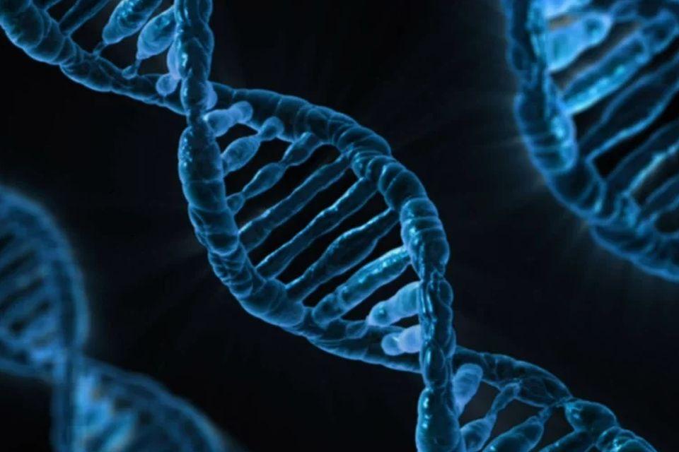 Cientista que editou a genética de embriões é condenado à prisão