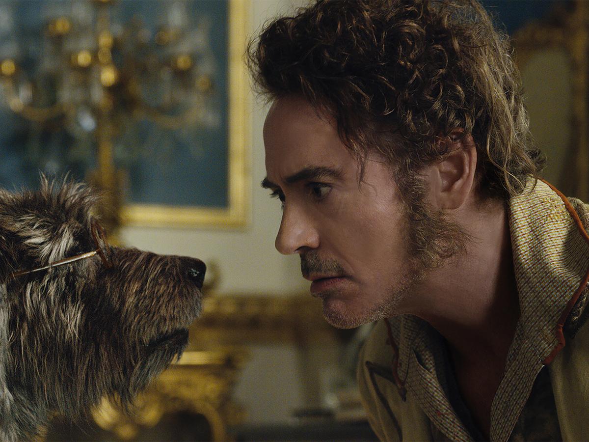 Dolittle, novo filme de Robert Downey Jr., deve fracassar nas bilheterias