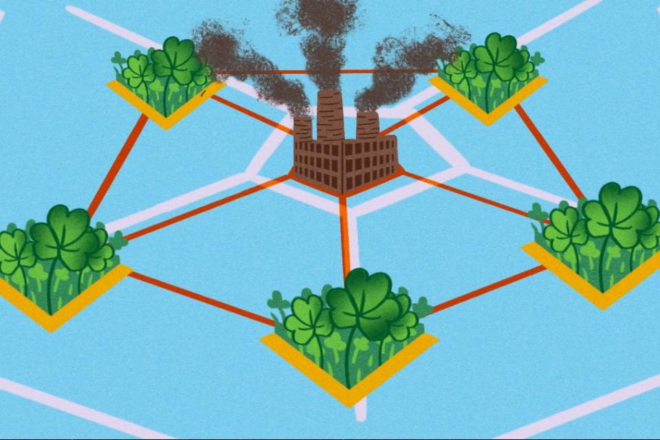 Compensações de carbono: ajudando o planeta ou encobrindo falcatruas?