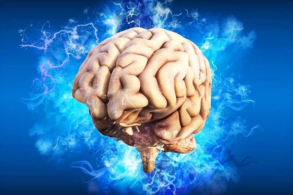 Cérebro de vítima de erupção do Vesúvio foi transformado em vidro