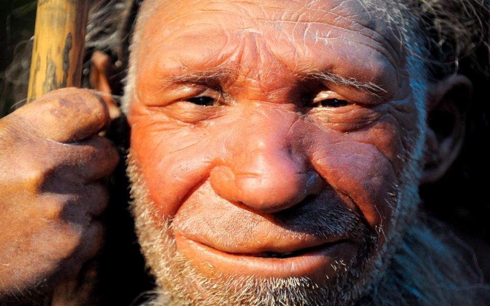 http://america.aljazeera.com/articles/2013/12/17/neanderthals-caredforelderlyburieddeadevidenceshows.html