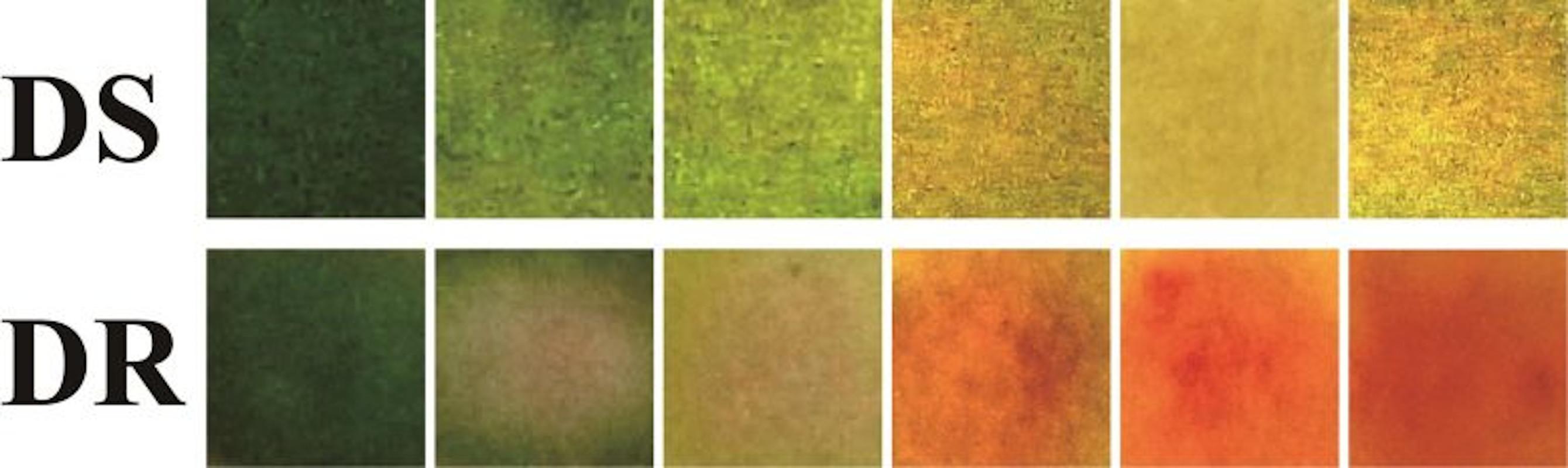 Curativo inteligente muda de cor e trata infecções bacterianas