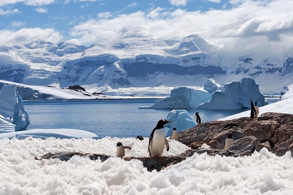 Antártica alcançou novo recorde de temperatura, alertam especialistas