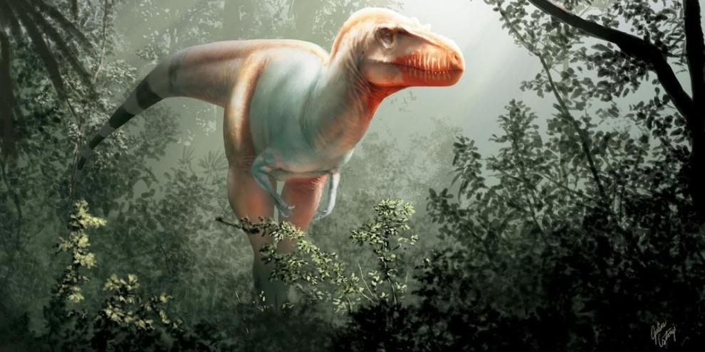 (Fonte: Jared Voris/Cretaceous Research/Reprodução)