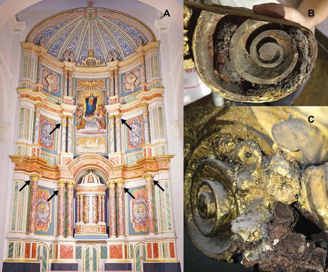abelhas mumificadas em catedral no Panamá