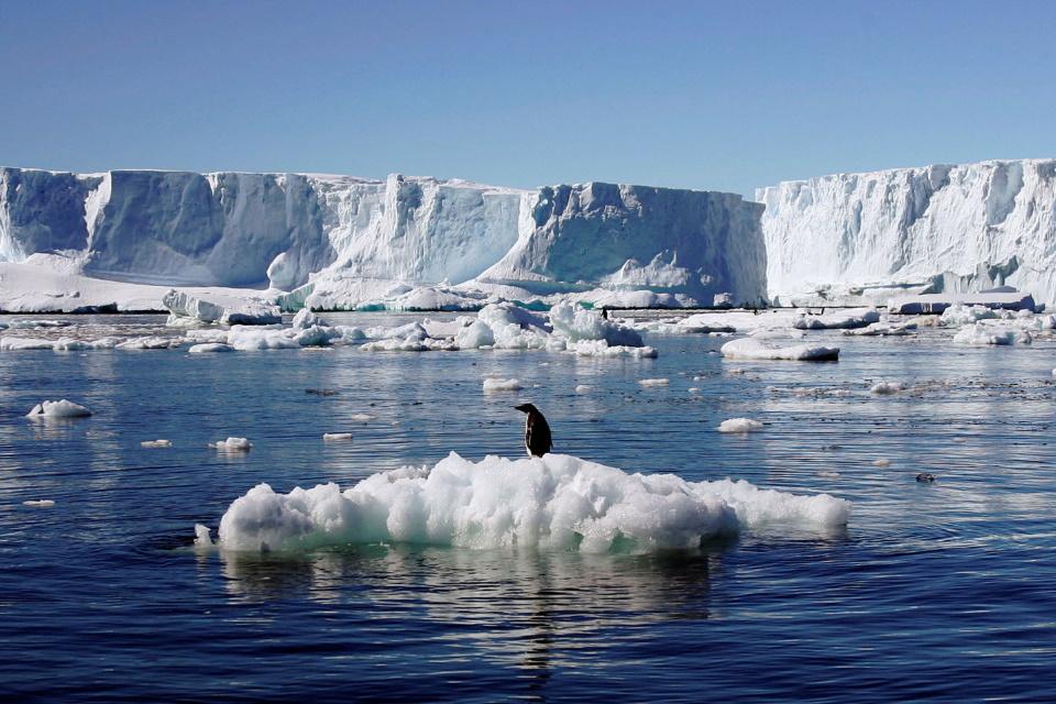 Recorde assustador: termômetros marcam mais de 18 °C na Antártida