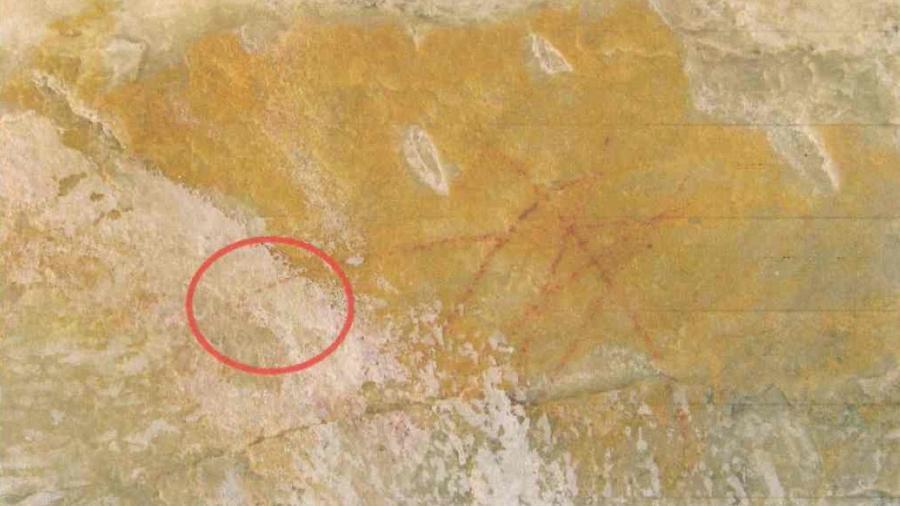 https://noticias.uol.com.br/cotidiano/ultimas-noticias/2020/02/16/recordtv-e-condenada-a-pagar-r-2-milhoes-por-pintar-arte-rupestre-em-mg.htm