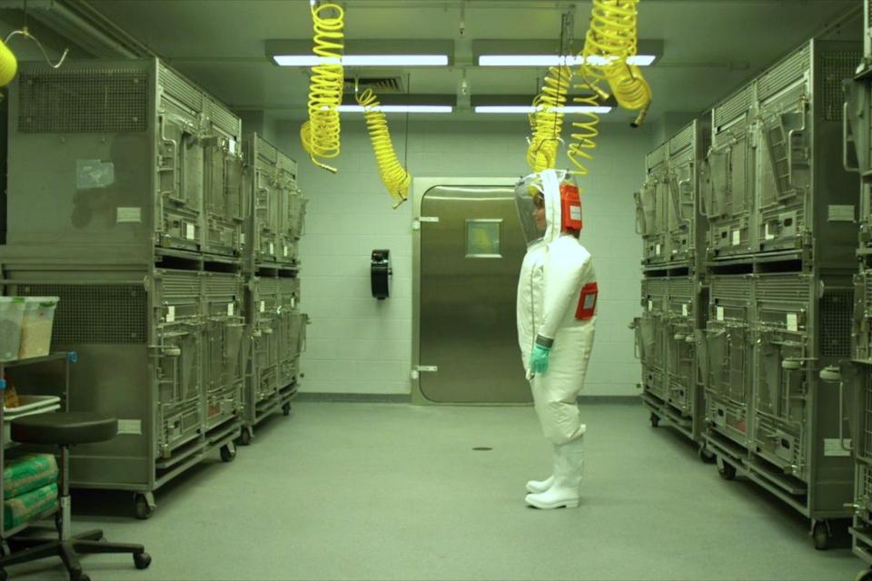 20 filmes e séries sobre epidemia mundial