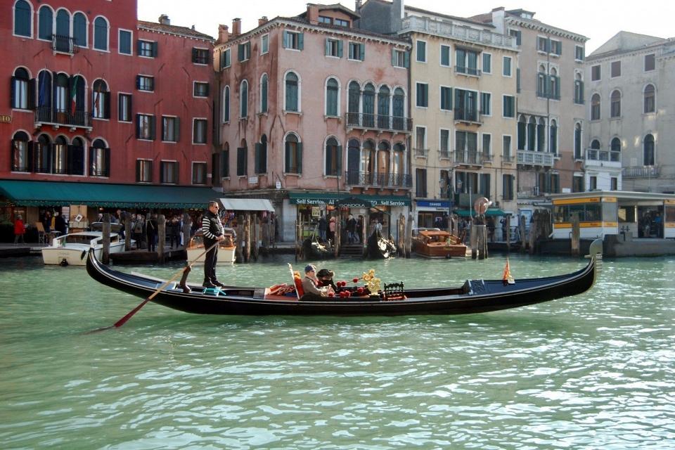 Canais de Veneza parecem mais limpos e com peixes durante quarentena