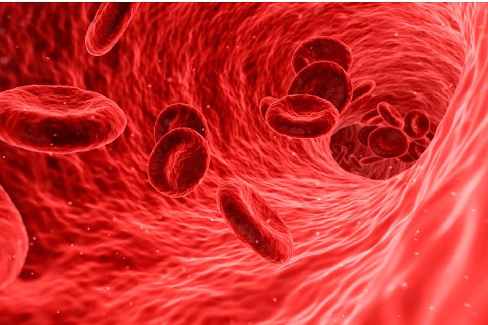 Americanos utilizarão plasma sanguíneo para tratar coronavírus