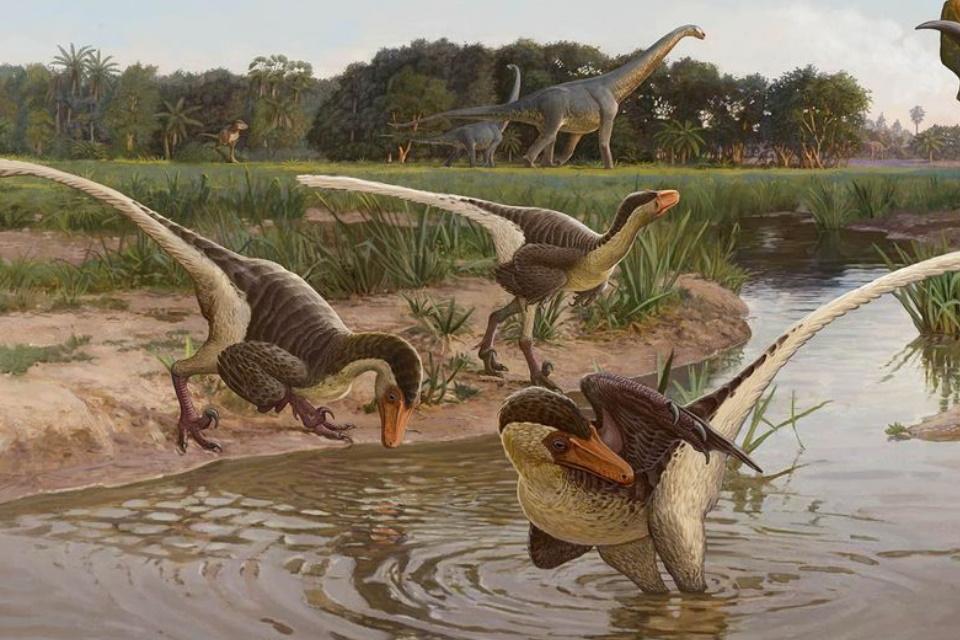 """""""Primo"""" dos Velociraptores é descoberto no Novo México"""