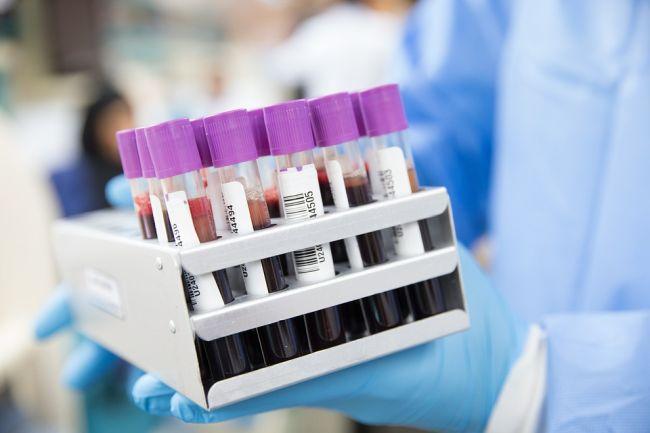 Uma das possibilidades é usar os anticorpos em pessoas do grupo de risco, aumentando a proteção delas