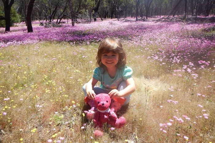 Grace pode ser considerada a mais jovem pesquisadora publicada da Austrália.