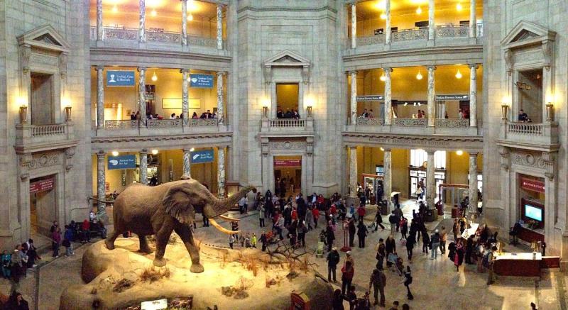 Museu Nacional de História Natural Smithsonian