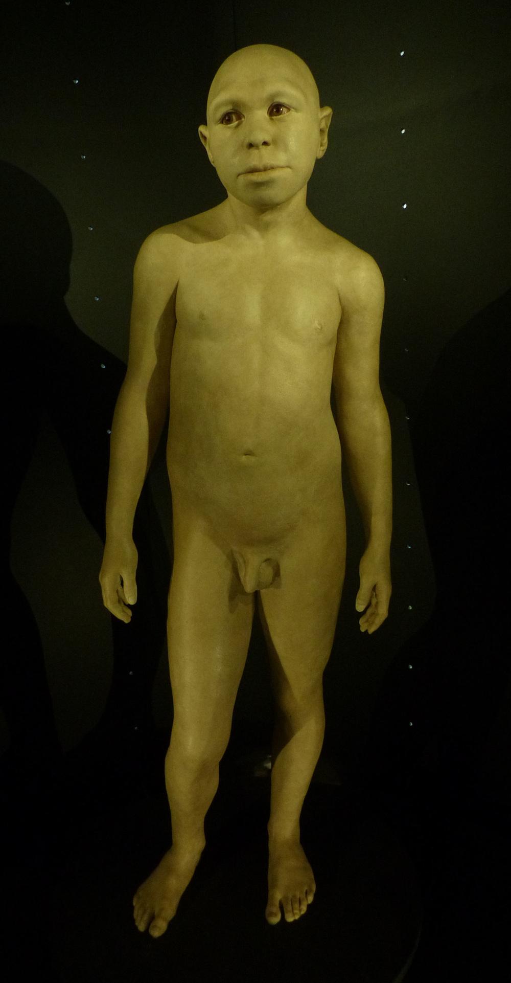 """Espécie """"irmã"""" de nosso ancestral comum com neandertais e denisovanos"""