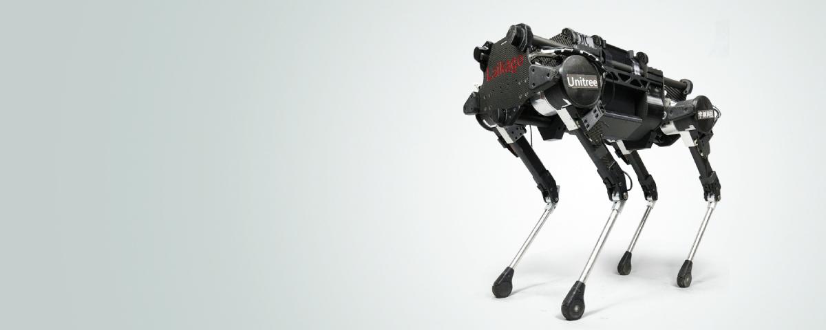 Imagem de: Cães reais ensinam cachorro-robô da Google a andar