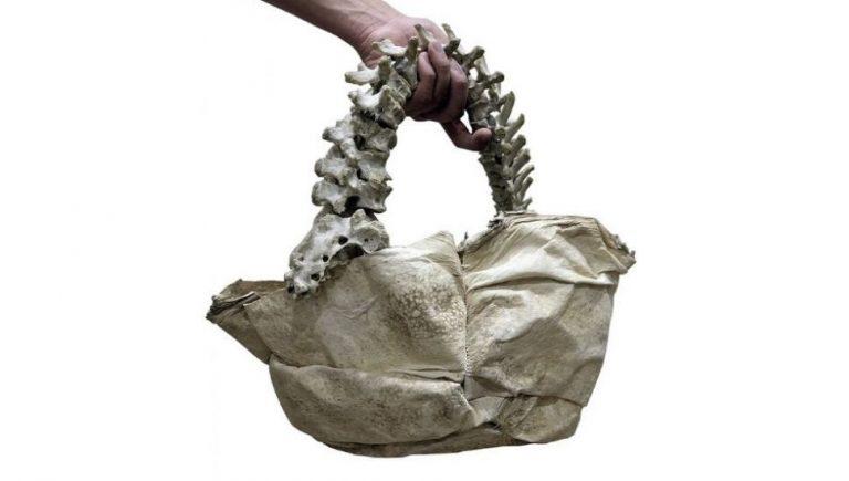 Bolsa da coleção Amitayus