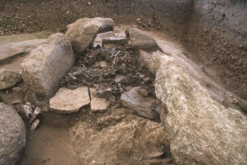 (Serviço Arqueológico de Berna, Suíça)