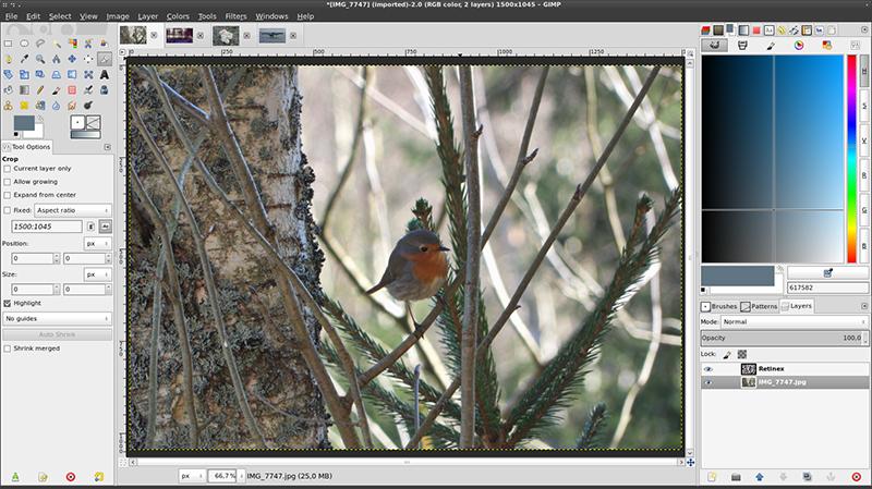 Gimp é uma das opções gratuitas para edição de imagem