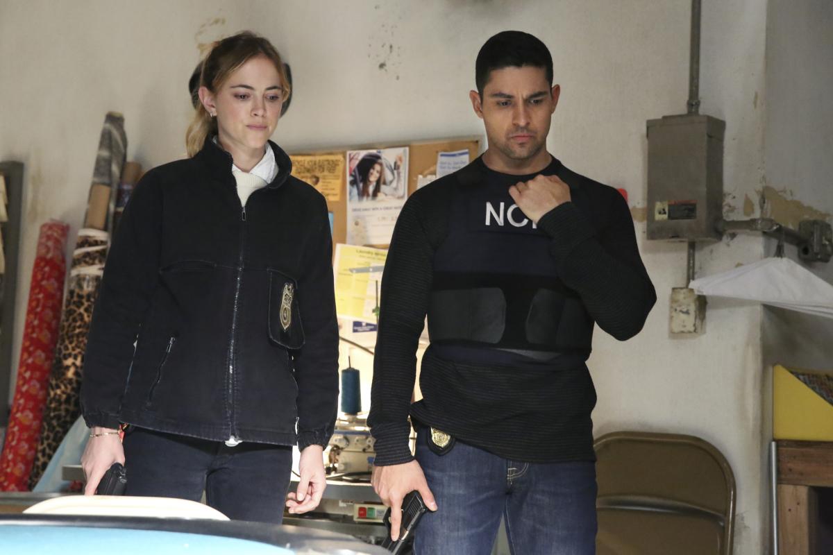 NCIS e suas spin-offs renovadas para novas temporadas(CBS/Reprodução)