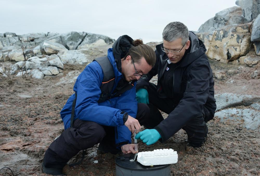 Pesquisadores da Universidade de Copenhague recolhem amostras de guano.