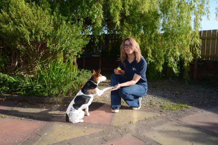 Dra. Lucy e sua cachorra, Martha