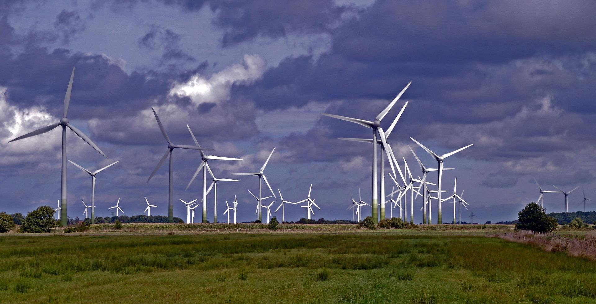 Além de gerar energia eólica, os parques vão produzir hidrogênio.