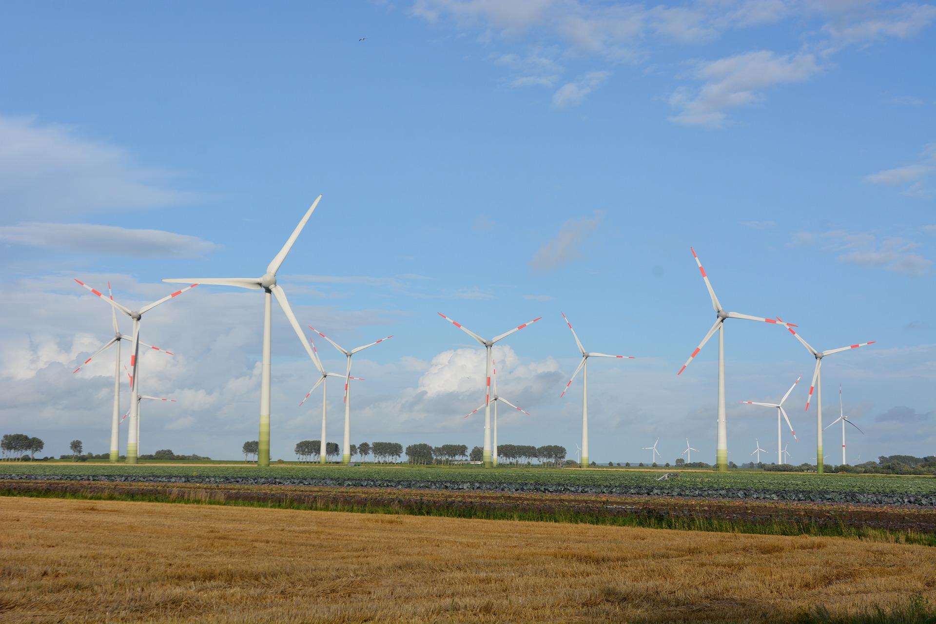 Dinamarca tem tradição em investir em energia limpa.