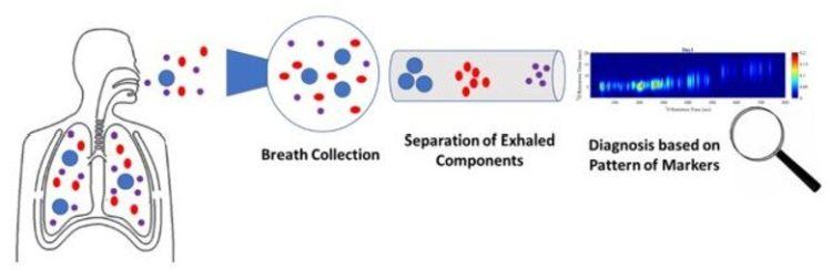 A ilustração mostra como o sistema funciona na prática.