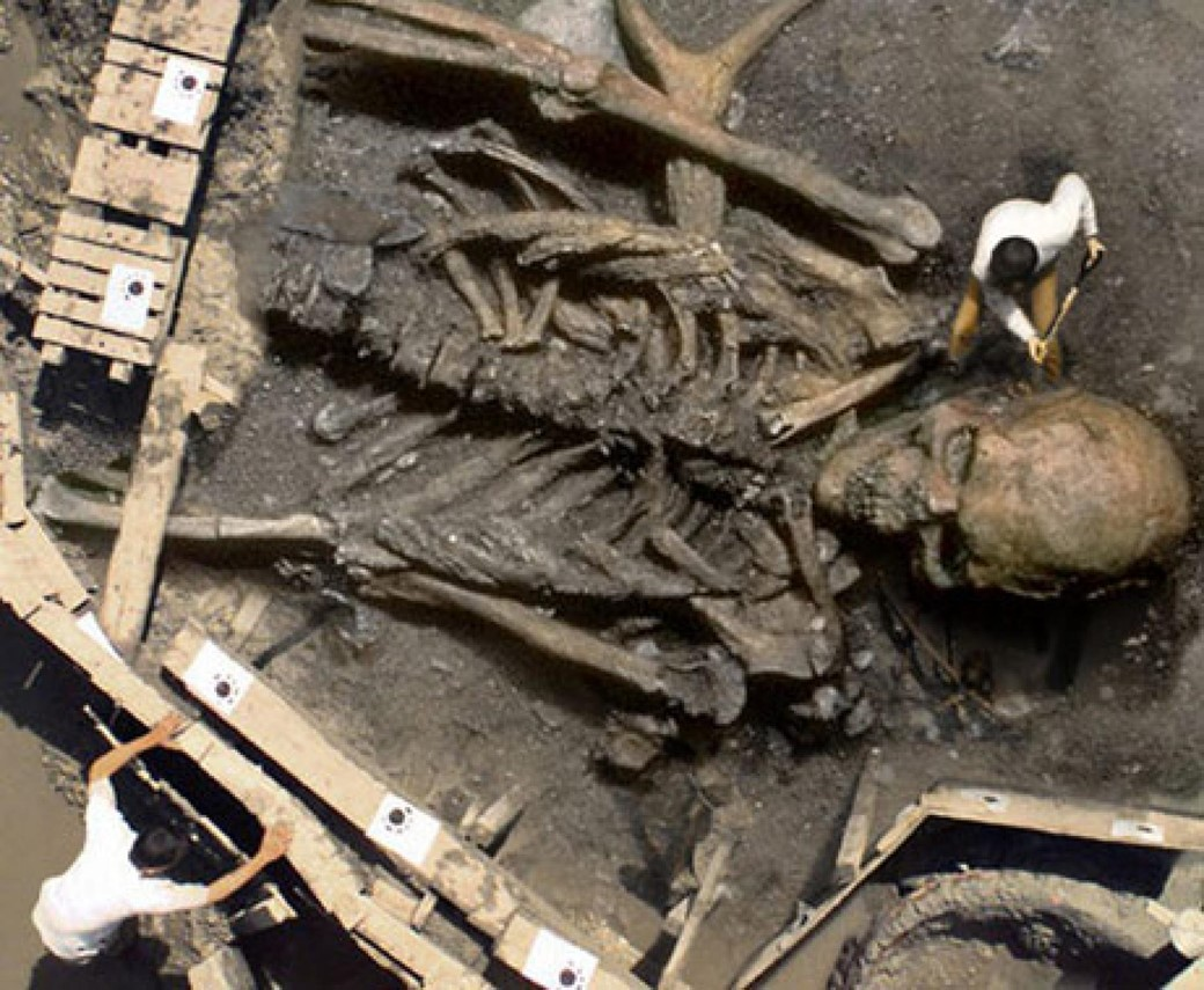 Suposto esqueleto gigante encontrado na Índia. (Ironkite/Reprodução)