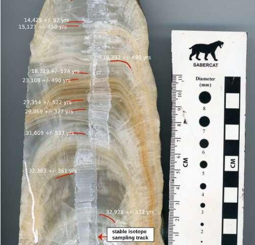 Seção de uma estalagmite cortada e polida; as datas em que cada parte se formou pode ser vista na imagem.