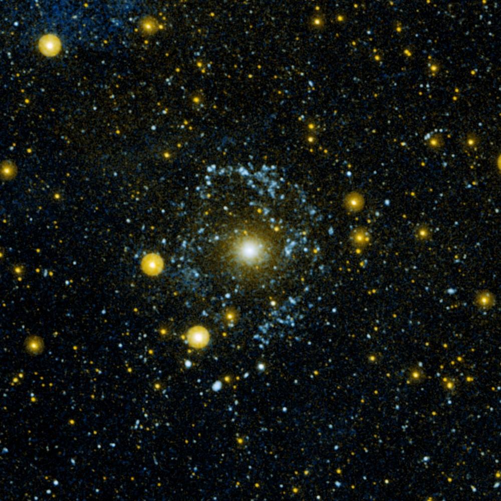 Vista sob luz ultravioleta, a mesma galáxia (o ponto brilhante no meio da imagem) revelou um anel de estrelas jovens.