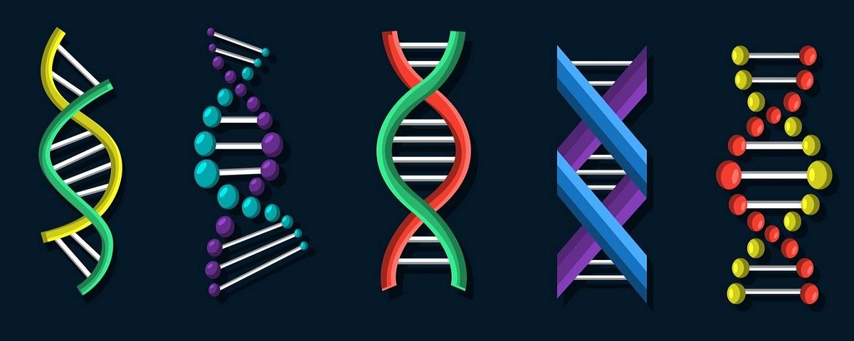 Ciência muda nome de genes por causa do Microsoft Excel