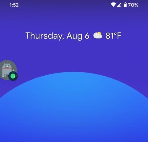 Easter-egg do Android 11 envolve botão de volume e gatinhos