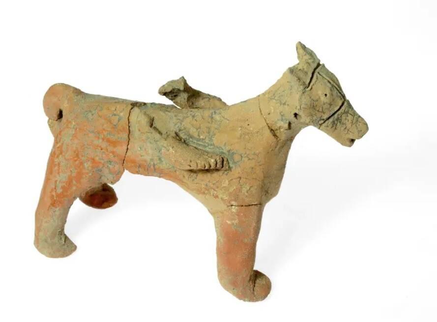 A questão dos cavalos foi um ponto central da teoria de Garfinkel. (Fonte: The Jerusalem Post)